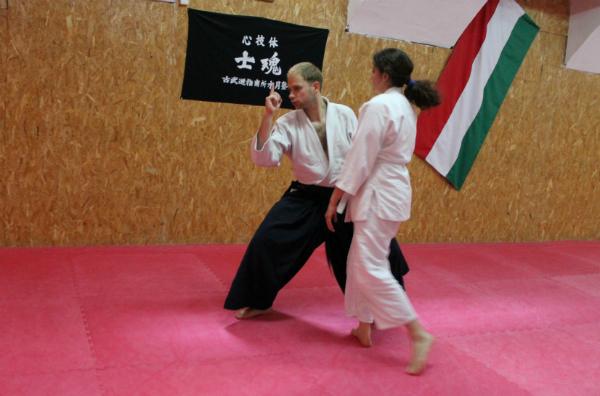Aikido seminar Csák Gergely2