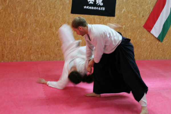 Aikido seminar Csák Gergely3
