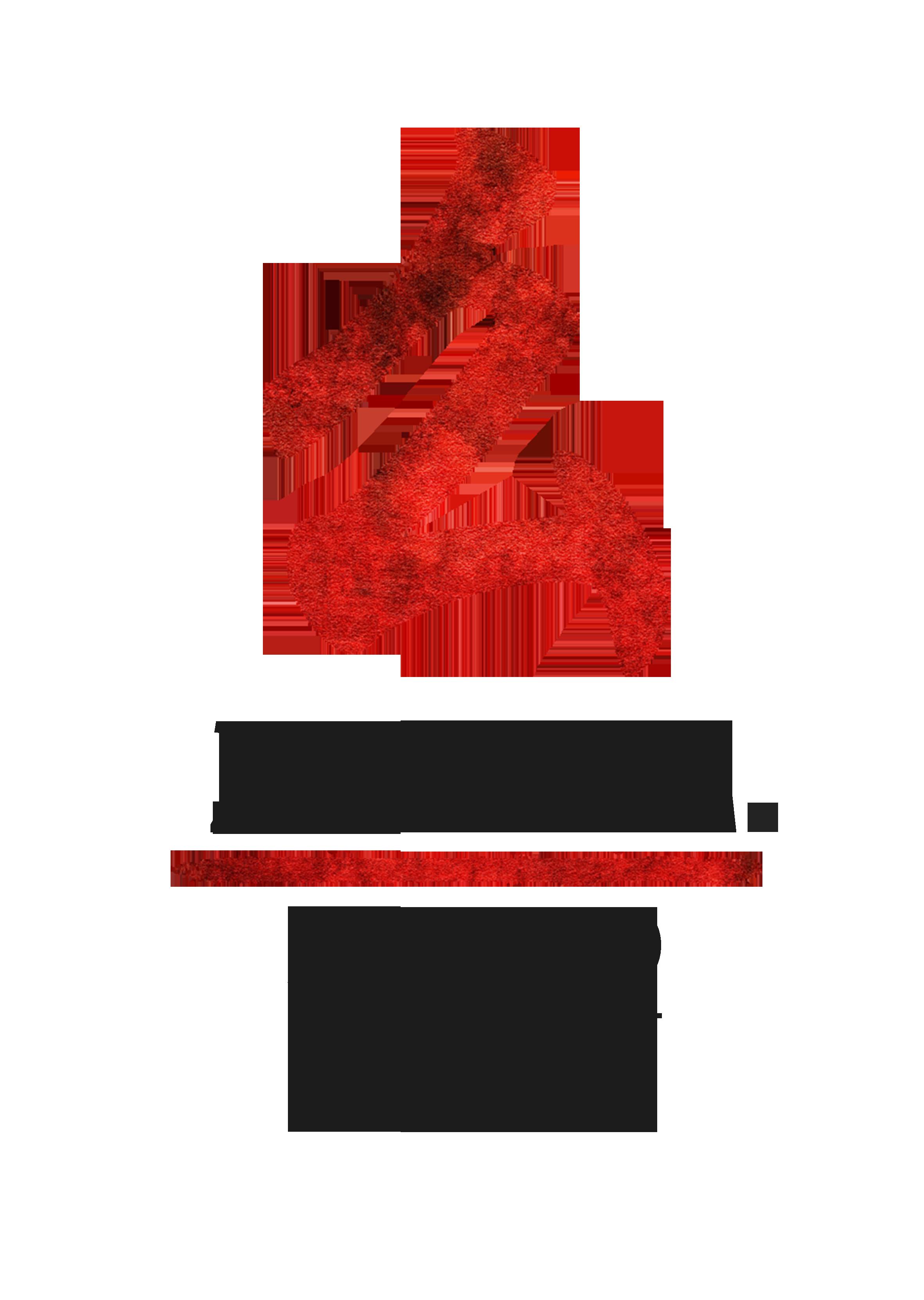 zumm aikido logo