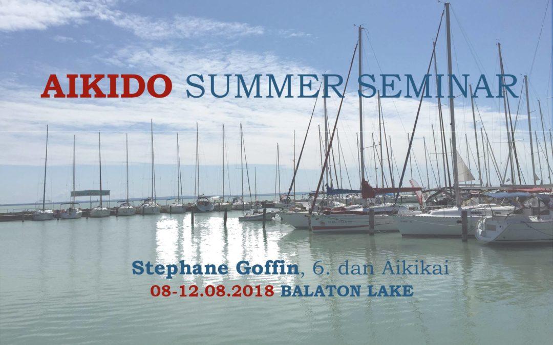Aikido nyári tábor Stéphane Goffin vezetésével / Aikido Summer Seminar with Stéphane Goffin