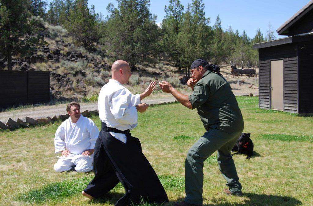 Hatékonyság-para, avagy mibe akarják hajszolni az aikido-t? – 1. rész