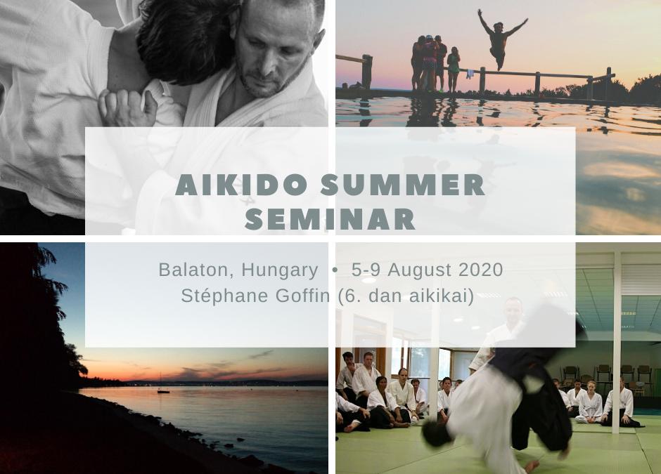 Aikido Summer Seminar 2020