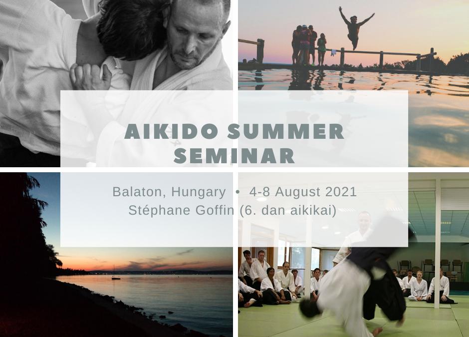 Aikido summer seminar 2021