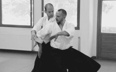 Aikido summer seminar with Stéphane Goffin (6. dan aikikai)