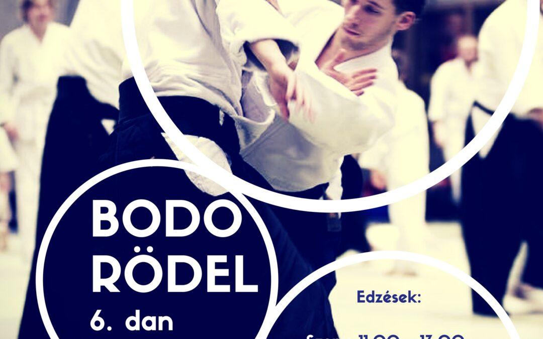 Aikido edzőtábor: Bodo Rödel Budapesten