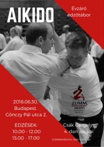 Évzáró edzőtábor Csák Gergely vezetésével @ Zumm Aikido dojo | Budapest | Magyarország