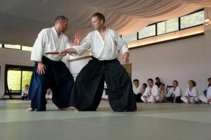 Stéphane Goffin nyári aikido edzőtábor – részletek