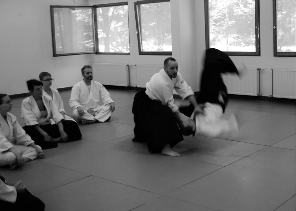 Aikido edzőtábor Balatonkenese Stéphane Goffin