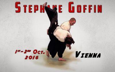 Stéphane Goffin aikido edzőtábor Bécsben